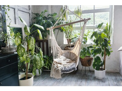 Végétaliser son intérieur